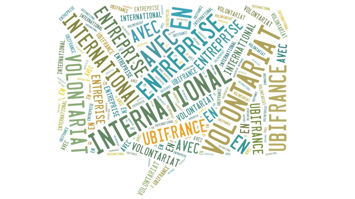 Le VIE , Volontariat International en Entreprise