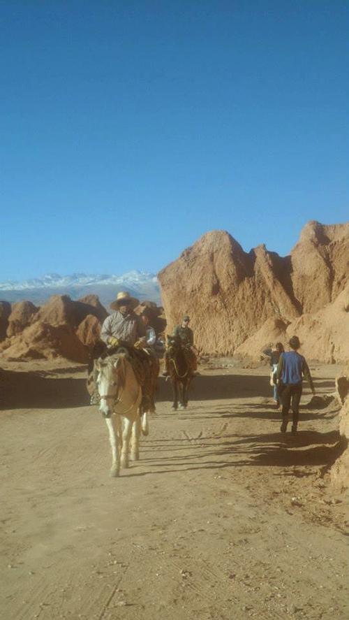 prof-fle-chili-San-Pedro-de-Atacama