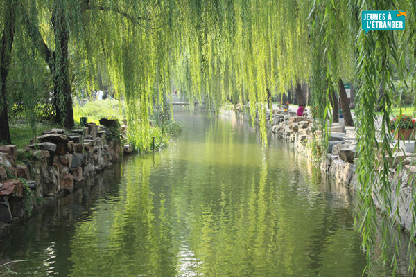 Visiter la Chine et étudier à Pékin