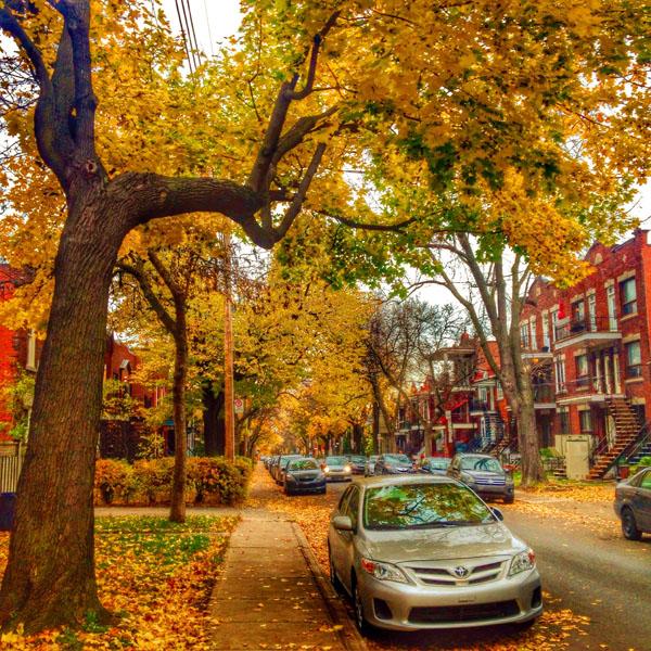 trouver un logement à Montréal
