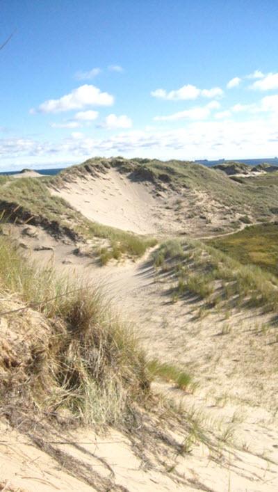 plages au danemark