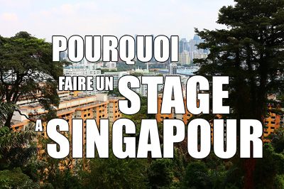 stage singapour raisons