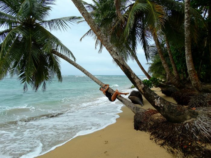 stage tourisme amerique latine