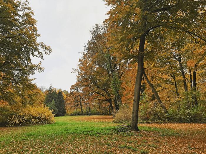paysage-baviere