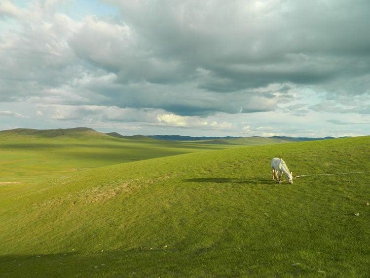decouvrir mongolie