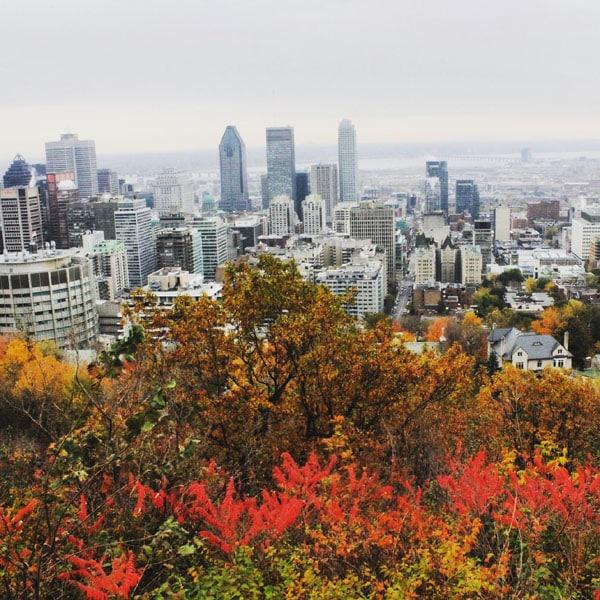 pvt montreal