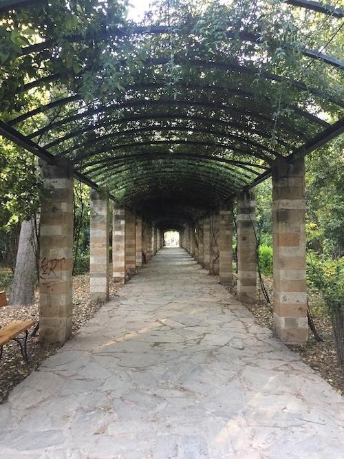 jardin athenes