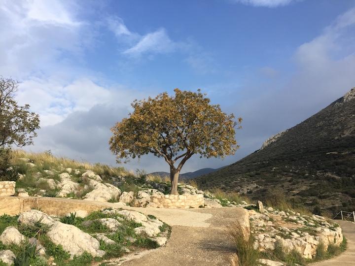 Mycenes grece